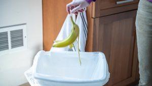 στο σπίτι οι κάδοι απορριμάτων έχουν από τα πιο βρώμικα σημεία